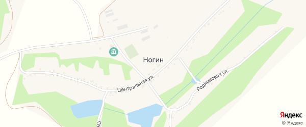 Центральная улица на карте хутора Ногина с номерами домов