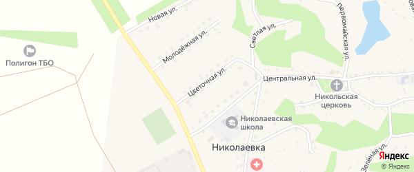 Цветочная улица на карте села Николаевки с номерами домов