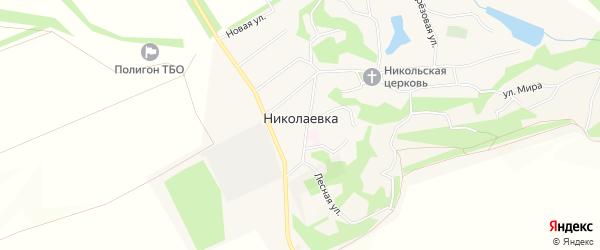 Карта села Николаевки в Белгородской области с улицами и номерами домов