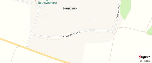 Молодежная улица на карте села Банкино с номерами домов