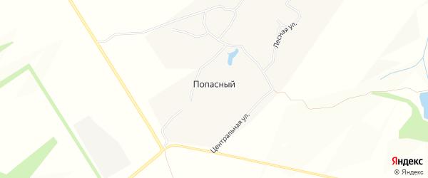 Карта Попасного хутора в Белгородской области с улицами и номерами домов