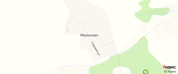 Карта села Малиново в Белгородской области с улицами и номерами домов