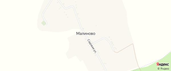 Садовая улица на карте села Малиново с номерами домов