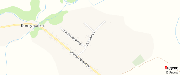 Луговая улица на карте села Колтуновки с номерами домов