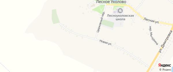 Узкий переулок на карте села Лесное Уколово с номерами домов