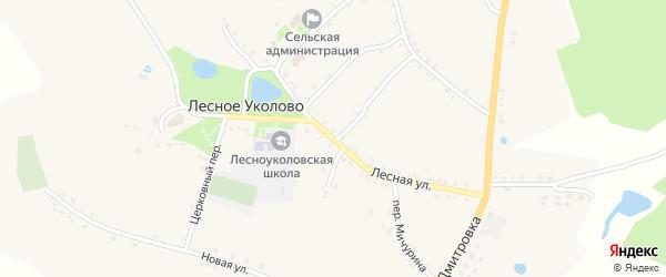 Лесная улица на карте села Лесное Уколово с номерами домов