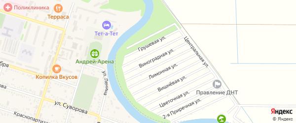 Виноградная улица на карте садового некоммерческого товарищества Мелиоратора-1 с номерами домов