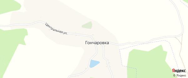 Центральная улица на карте хутора Гончаровки с номерами домов