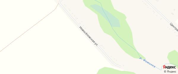 Новоселовская улица на карте села Пристеня с номерами домов