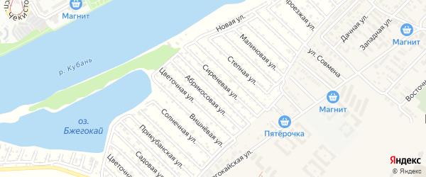 Жасминовая улица на карте садового некоммерческого товарищества Закубанские сады с номерами домов