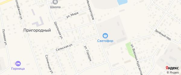 Сельская улица на карте Каргополя с номерами домов
