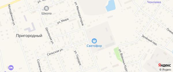Улица Мелиораторов на карте Каргополя с номерами домов