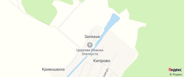 Карта деревни Заляжьего в Архангельской области с улицами и номерами домов