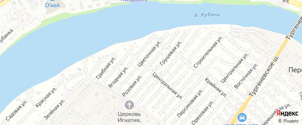 Розовая улица на карте садового некоммерческого товарищества Деметры с номерами домов