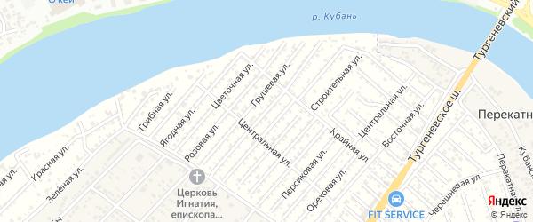 Виноградная улица на карте садового некоммерческого товарищества Закубанские сады 2 с номерами домов