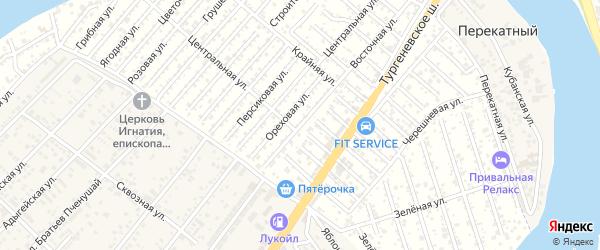Алычевая улица на карте садового некоммерческого товарищества Рассвета (рыбсовхоза) с номерами домов