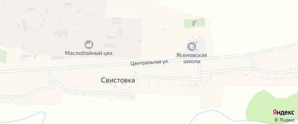 Центральная улица на карте села Свистовки с номерами домов