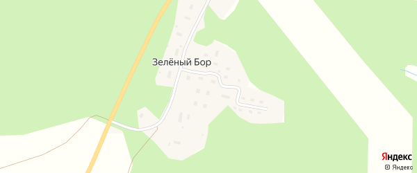 Лесная улица на карте поселка Зеленого Бора с номерами домов