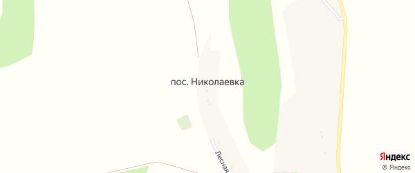 Лесная улица на карте поселка Николаевки с номерами домов