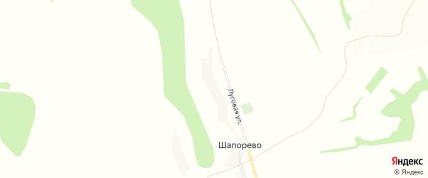 Карта села Шапорево в Белгородской области с улицами и номерами домов