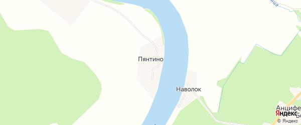 Карта деревни Пянтино в Архангельской области с улицами и номерами домов