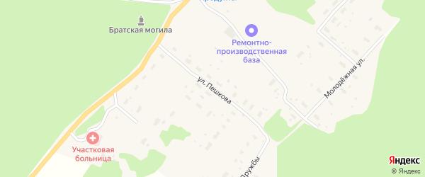 Улица Пешкова на карте деревни Анциферовского Бора с номерами домов