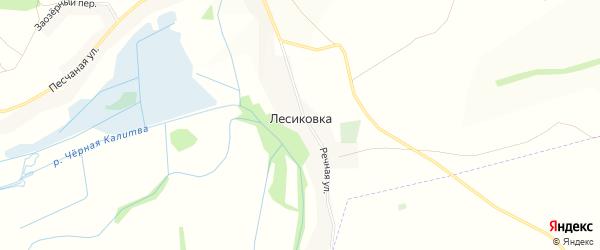 Карта поселка Лесиковки в Белгородской области с улицами и номерами домов