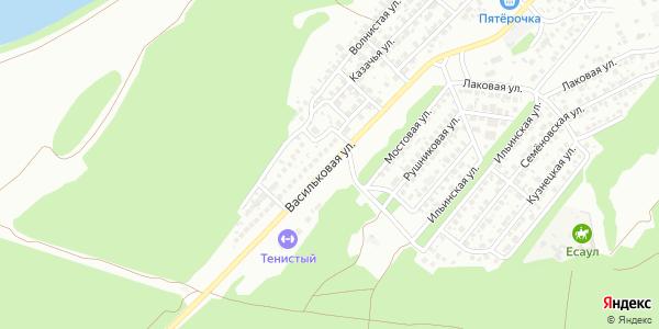 Васильковая Улица в Воронеже