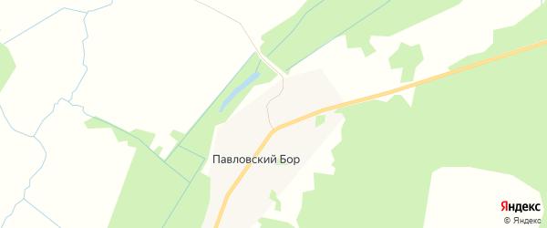 Карта деревни Павловского Бора в Архангельской области с улицами и номерами домов