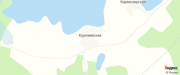 Карта Курлаевской деревни в Архангельской области с улицами и номерами домов