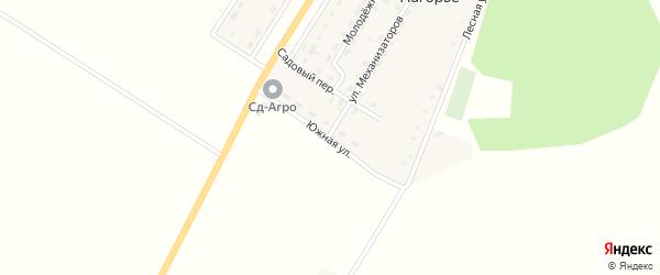 Южная улица на карте села Нагорья с номерами домов