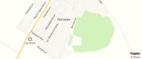 Лесная улица на карте села Нагорья с номерами домов