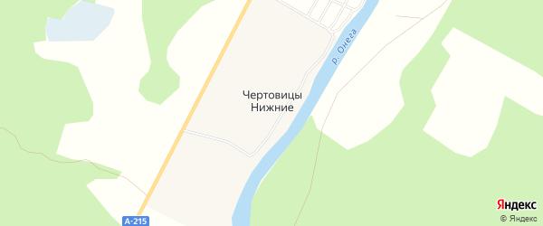 Карта деревни Чертовицы Нижние в Архангельской области с улицами и номерами домов