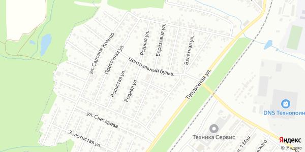 Березовая Улица в Воронеже