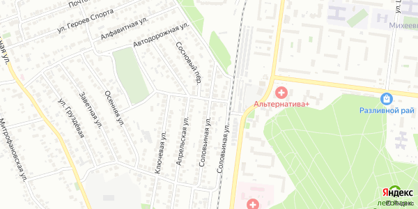 Соловьиная Улица в Воронеже