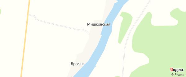 Карта деревни Брычнь в Архангельской области с улицами и номерами домов