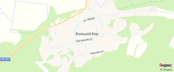 Карта деревни Большого Бора в Архангельской области с улицами и номерами домов