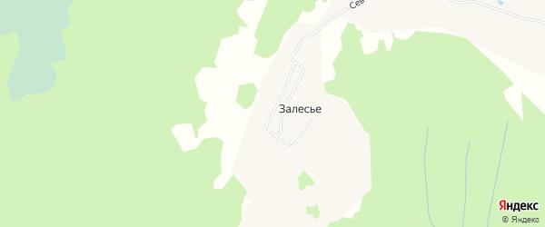 Карта деревни Залесья в Архангельской области с улицами и номерами домов