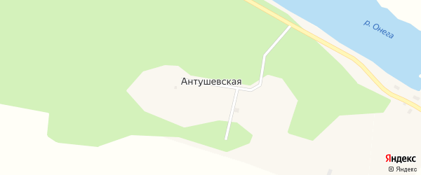 Антушевская улица на карте Антушевской деревни с номерами домов