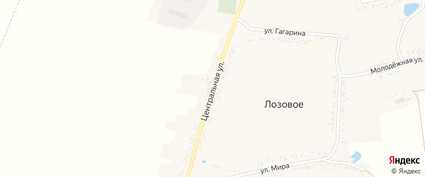 Центральная улица на карте Лозового села с номерами домов