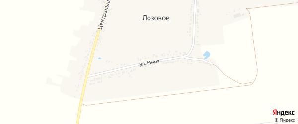 Улица Мира на карте Лозового села с номерами домов