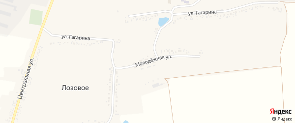 Молодежная улица на карте Лозового села с номерами домов
