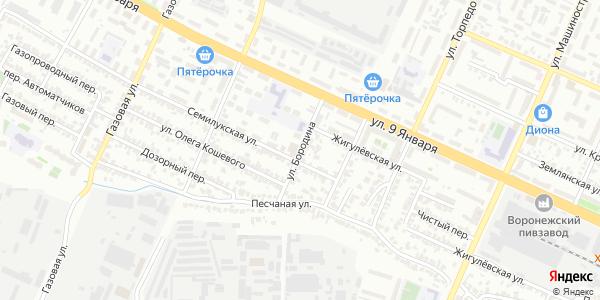 Бородина Улица в Воронеже