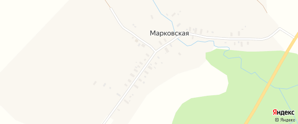 Улица Ленинградский тракт на карте Марковской деревни с номерами домов