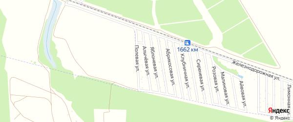 Алычевая улица на карте садового некоммерческого товарищества Радуги с номерами домов