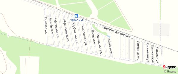 Сливовая улица на карте садового некоммерческого товарищества Дружбы-14 с номерами домов