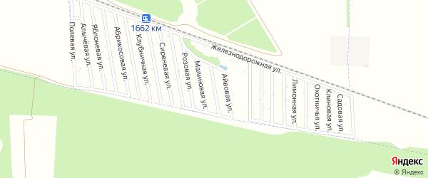 Виноградная улица на карте садового некоммерческого товарищества Дружбы-14 с номерами домов