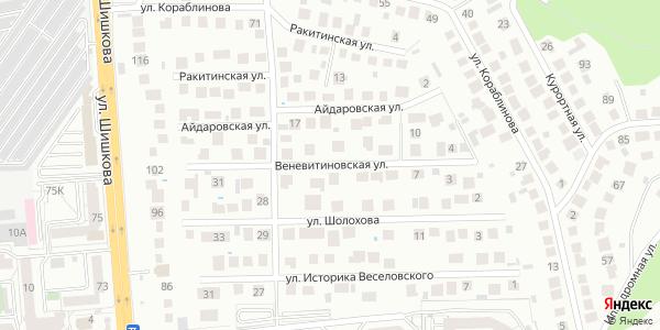 Веневитиновская Улица в Воронеже