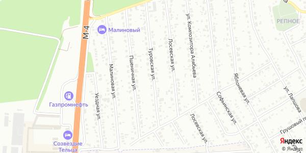 Туровская Улица в Воронеже