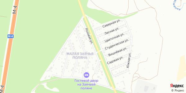Розовая Улица в Воронеже